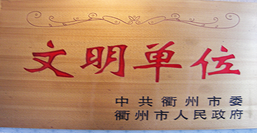 衢州市文明单位奖牌(2005年)