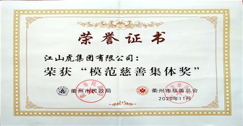 模范慈善集体奖(2020年)